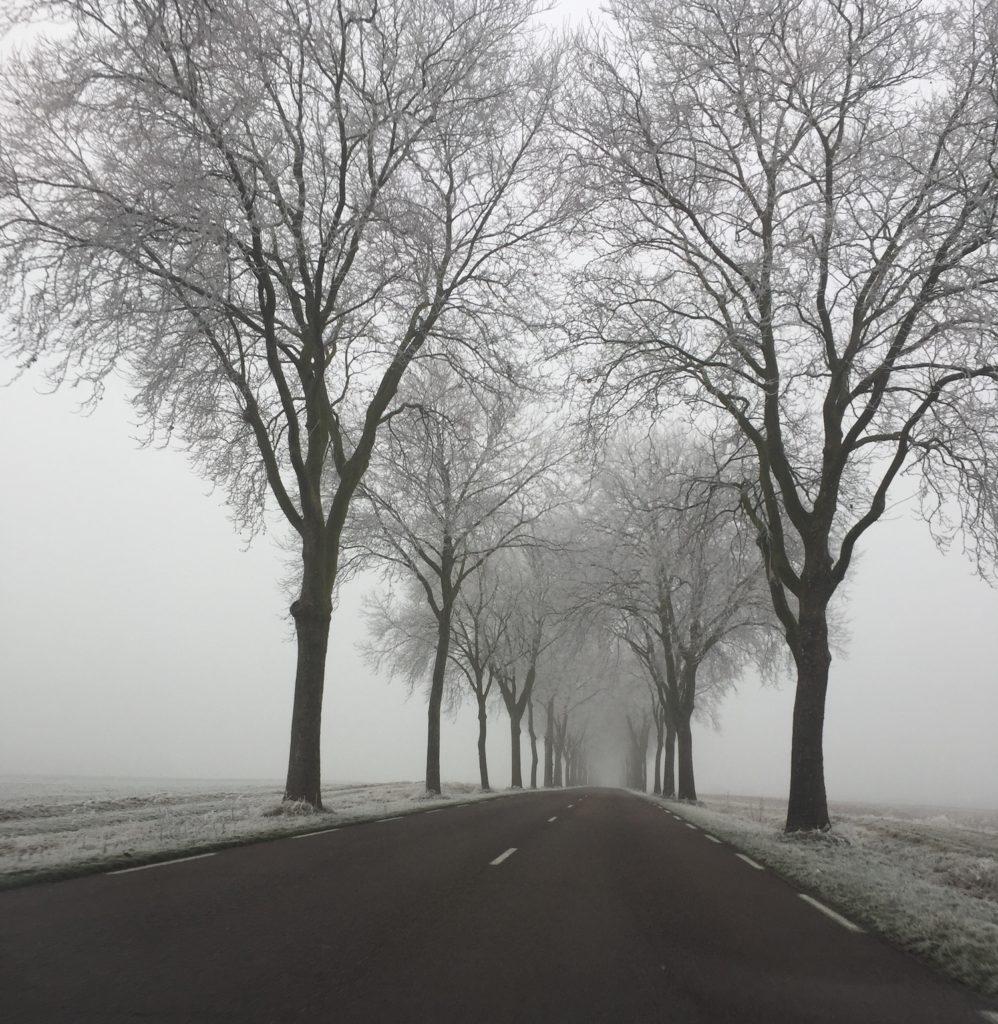 Route de Nogent